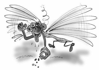 fakta om drogen bromodragonfly